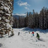 Αθλήματα χιονιού και σκι