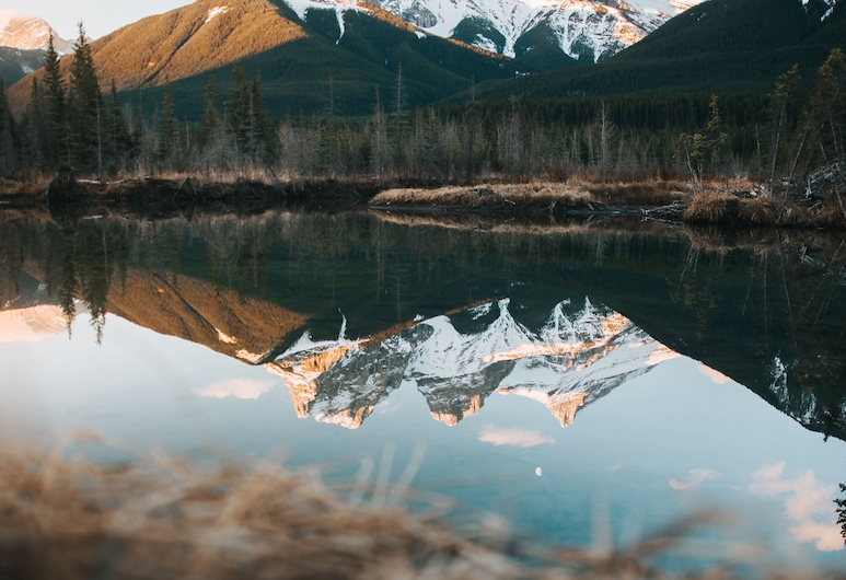 Basecamp Suites Canmore, Canmore, Kembara