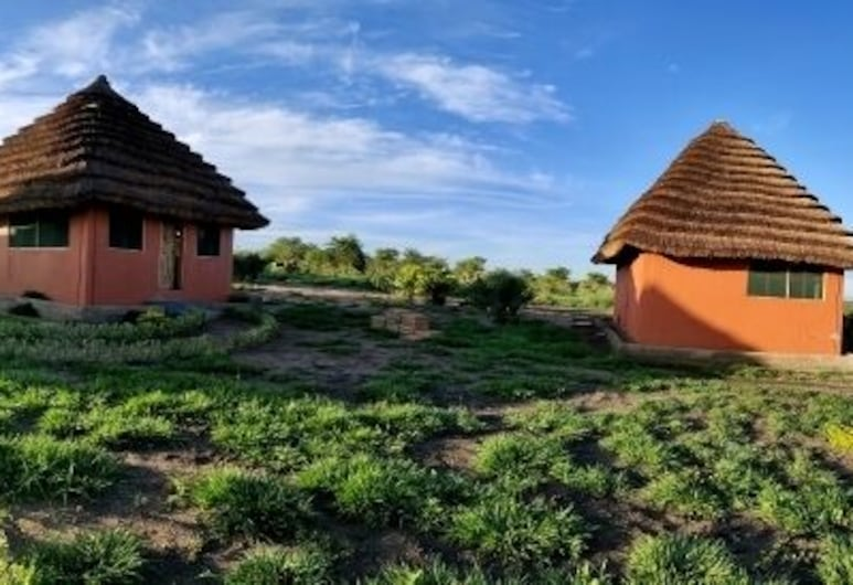 Tangi Safaris Lodge, Паквач