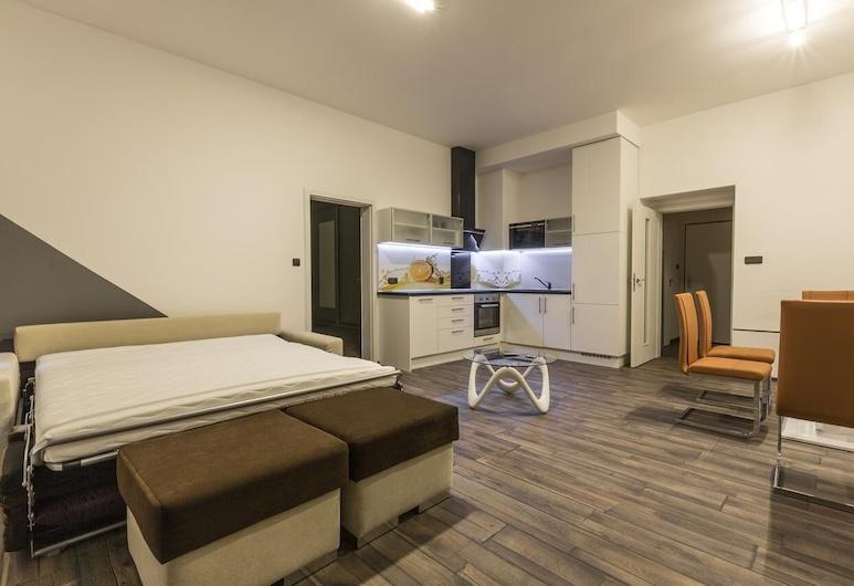 Apartsee apartments, Plzen, Departamento, Cocineta privada