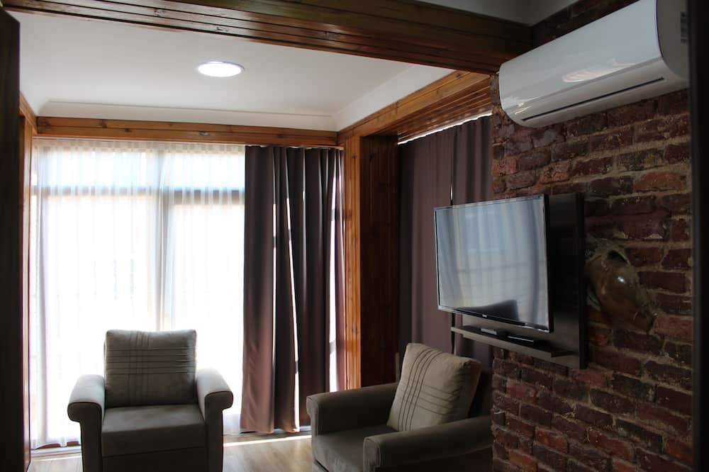 Family Studio Suite - Living Room