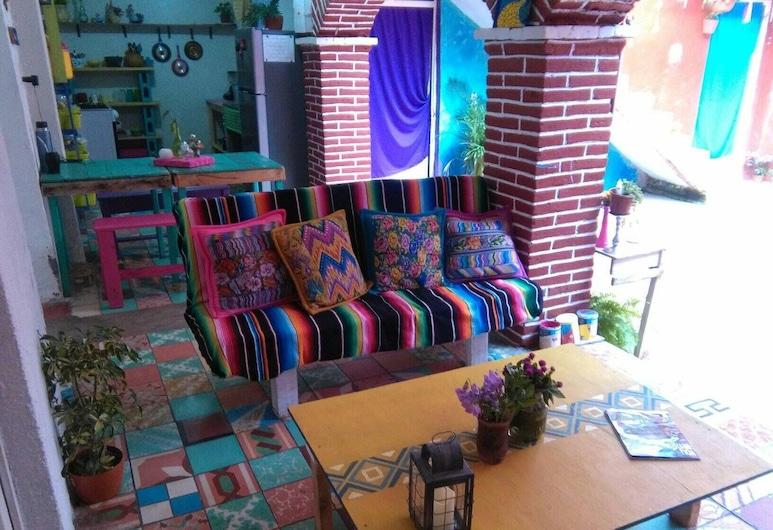Hostal Nikte, San Cristobal de las Casas, Lobby Sitting Area