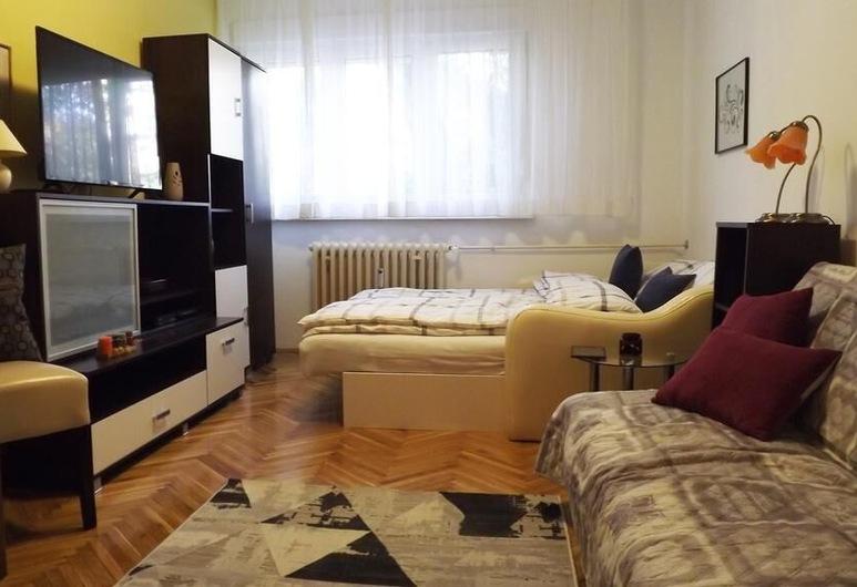 Studio Apartman Vijenac, Osijek, Studio Apartment, Opholdsområde