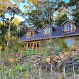 Binna Burra Rainforest Campsite
