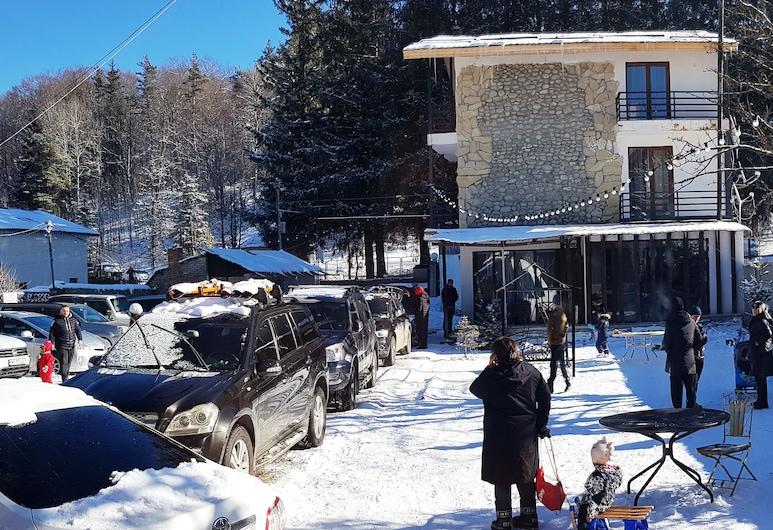 Papa Noel Hostel, Bakuriani, Otel Sahası
