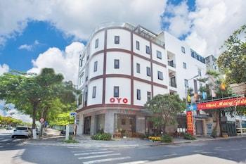 Fotografia do OYO 851 Tuan Tho em Da Nang