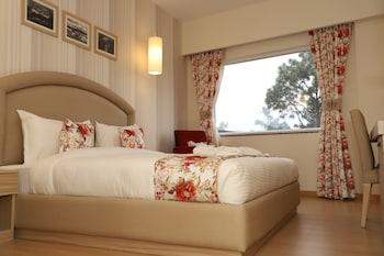 デラドゥーン、Hotel Mayvilasの写真