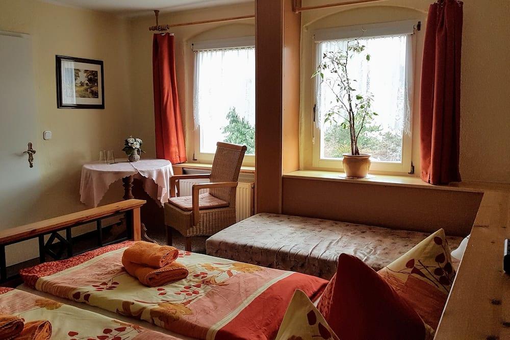 Стандартный двухместный номер с 1 двуспальной кроватью, смежные ванная комната и спальня (OFFLINE) - Номер