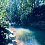 Gamtinis baseinas