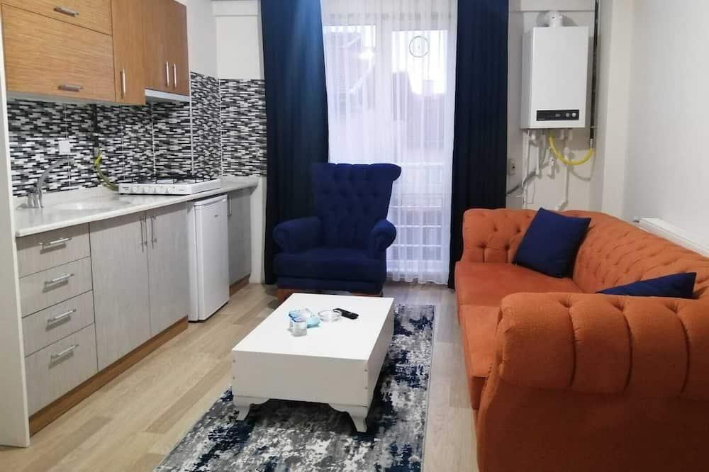 스탠다드 아파트, 침실 1개 - 거실 공간