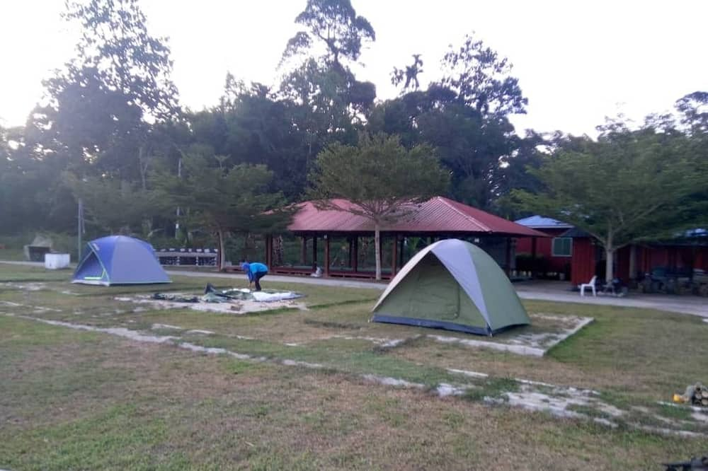 Family Tent - Room