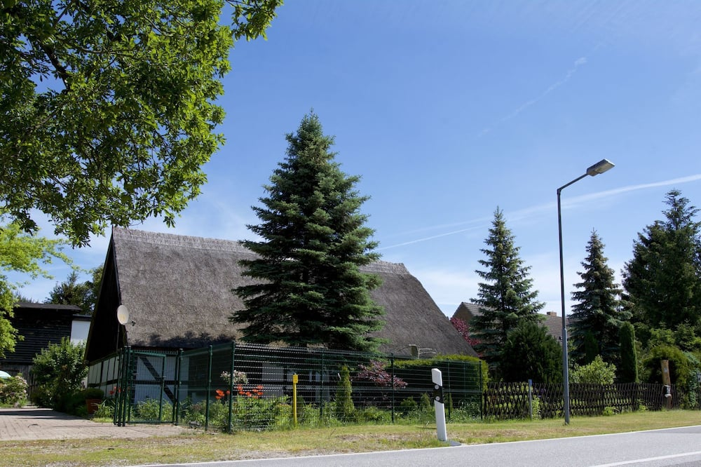 Sleep Under a Thatched Roof - Apartment in Ahlbeck Near Haff
