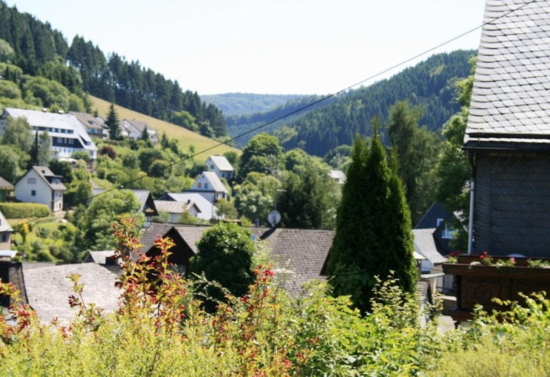 Gorgeous Apartment in Willingen Near Forest, Willingen (Upland)