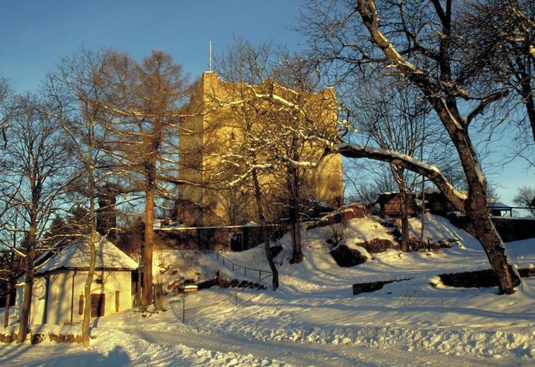 Lovely Holiday Home in Viechtach Near the Forest, Viechtach, Exterior