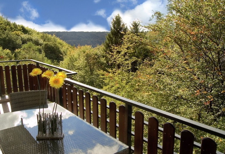 Super Luxury in the Middle of the Untouched Nature, Эрнцен, Апартаменты, Балкон
