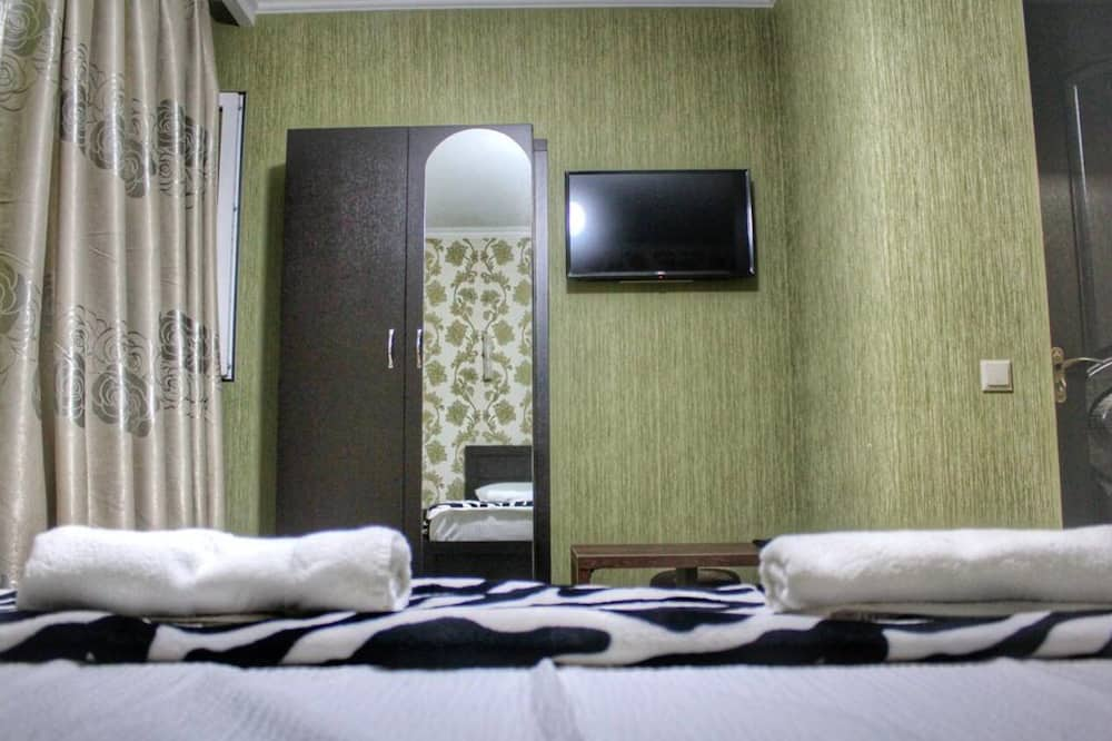 Basic Double or Twin Room - Guest Room