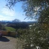 Dvojlôžková izba - Výhľad na záhradu