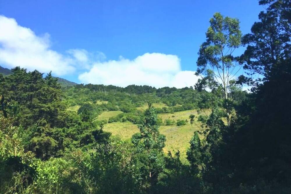 Finca La Fe: Spacious Cloud Forest Retreat