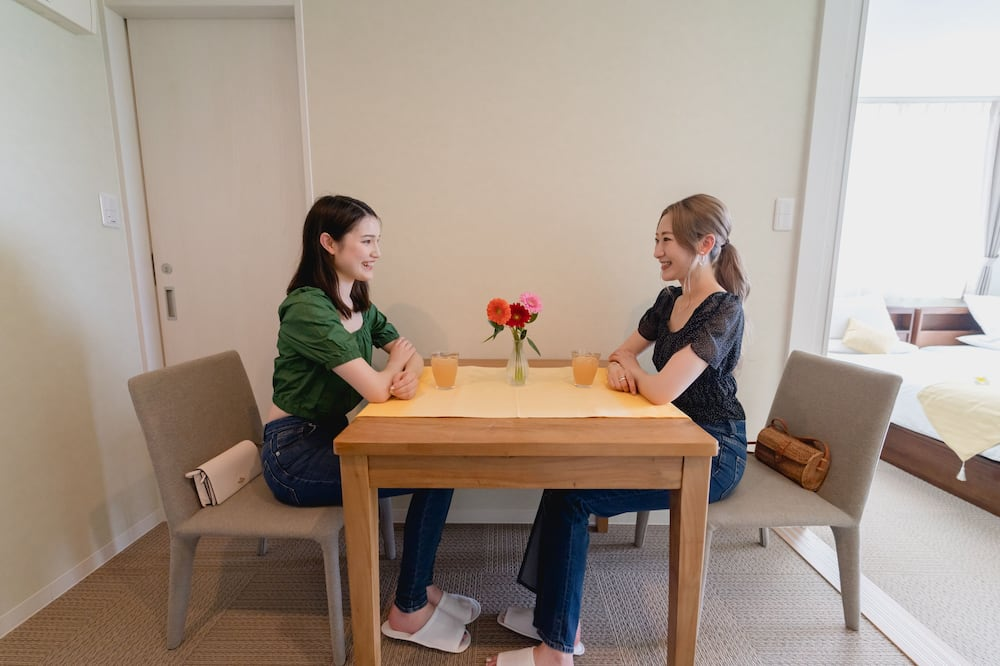 Studija (with Sofa Bed) - Vakarienės kambaryje