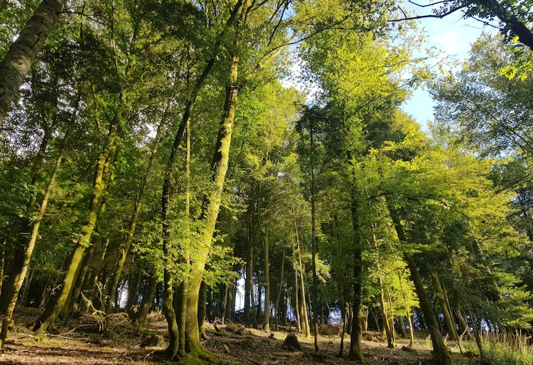 Le Sterou Parc Naturel, Priziac, Garten