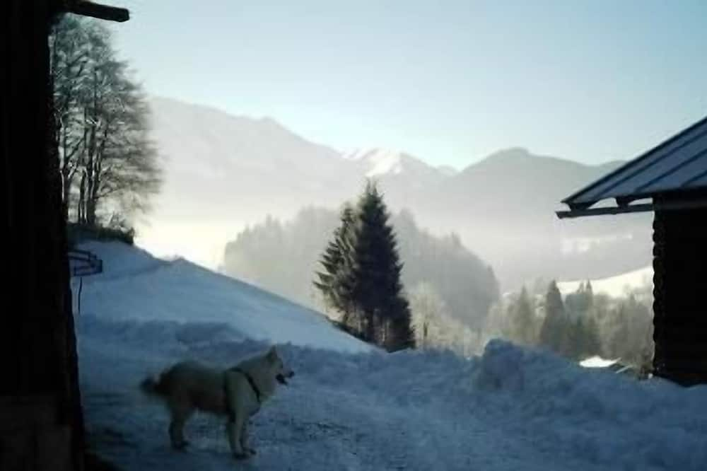 Apartment - Snow and Ski Sports