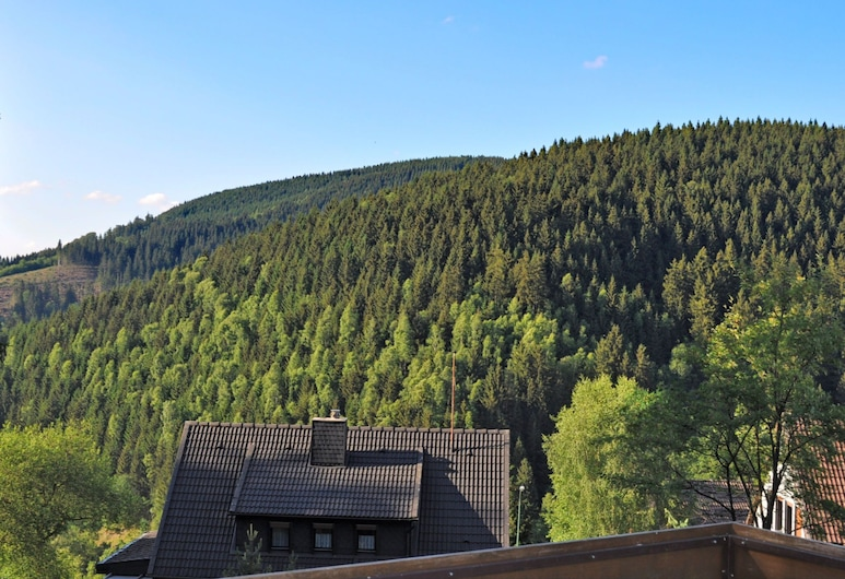 Large Apartment in Wildemann in the Upper Harz, at the Edge of the Forest, Clausthal-Zellerfeld, Balcony