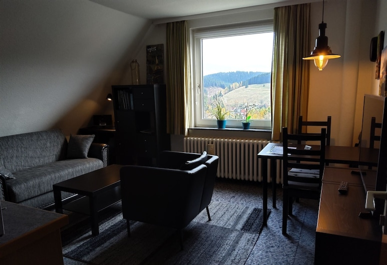 Large Apartment in Wildemann in the Upper Harz, at the Edge of the Forest, Clausthal-Zellerfeld, Living Room