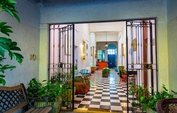 Image de Blue Pepper Plaza à Guadalajara