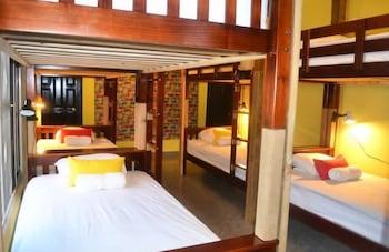 ภาพ Cataleya Hostel ใน Bocas del Toro