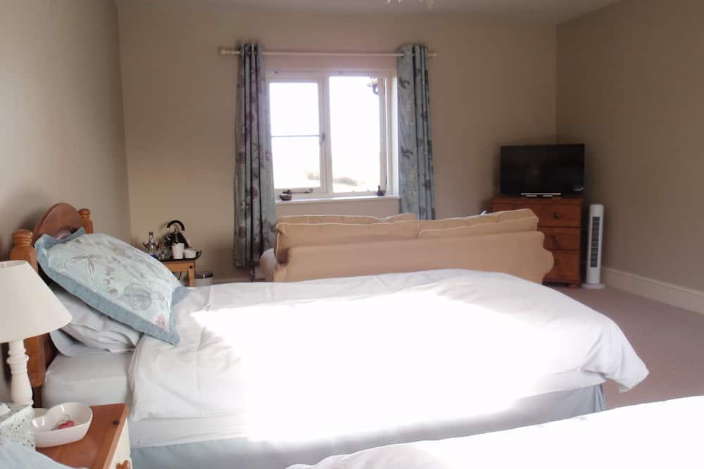 Сімейний номер (1 двоспальне або 2 односпальних ліжка) - Номер