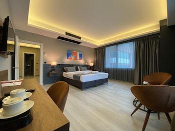 Obrázek hotelu The Plaza Hotel Edirne ve městě Edirne