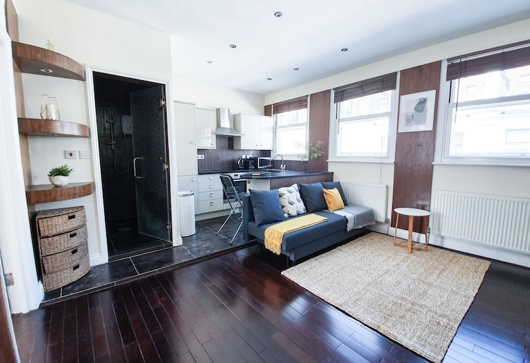 Brand new Flat in London West End - Museum 3, Londýn