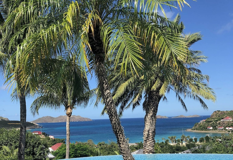 Dream Villa SBH Desirade, St. Barthelemy, Sundlaug