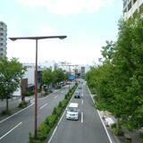 Apartment (D) - Blick auf die Straße
