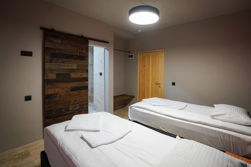 豪華雙床房 - 客房
