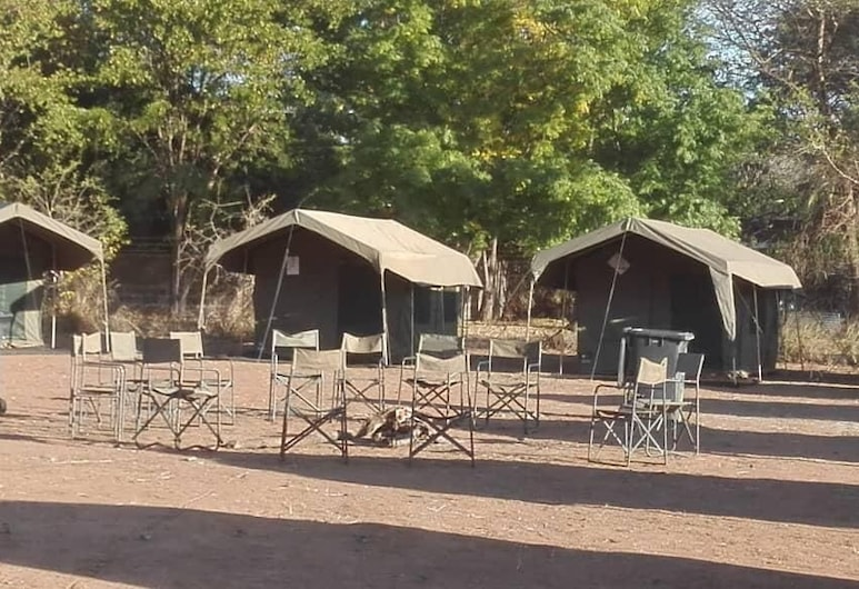 Bush Baby Calls mobile camps, Maun, Hotel Front