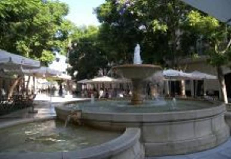 Attic Veedor 19 Days And Many Nights, Cádiz, Terrenos del establecimiento