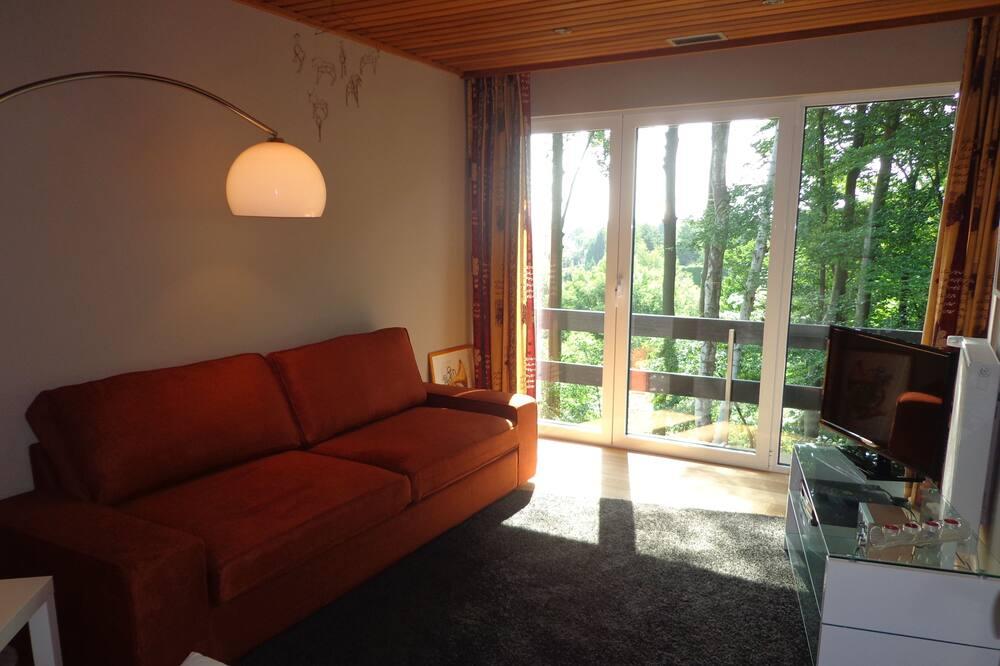 パノラミック アパートメント 1 ベッドルーム - リビング ルーム