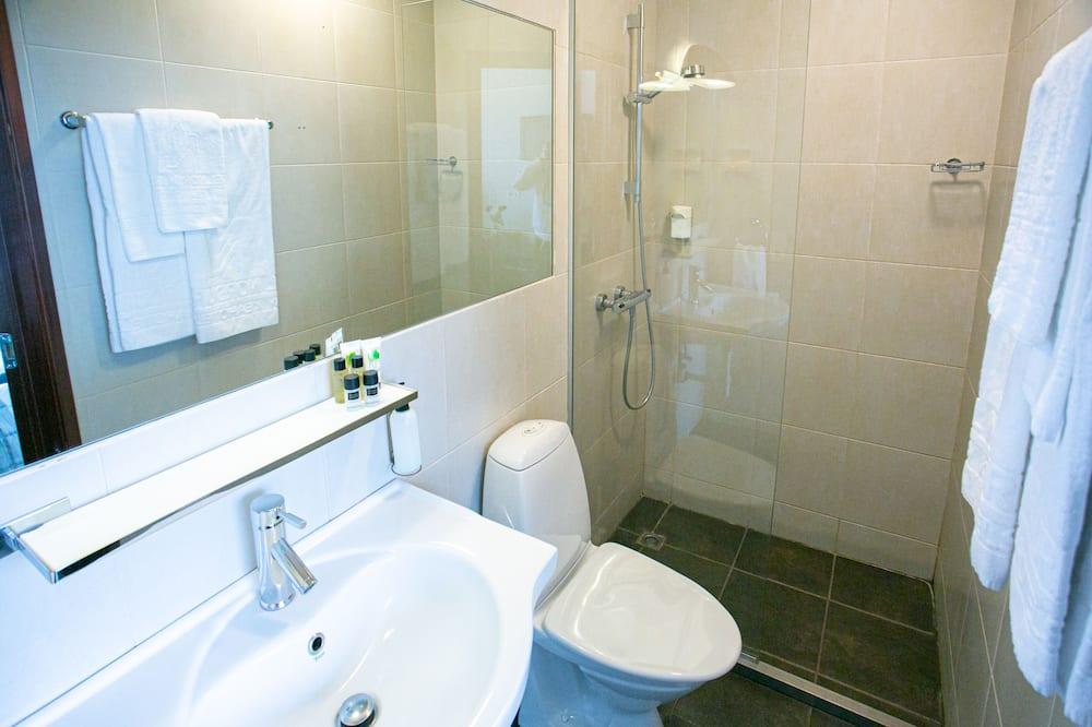 Standartinio tipo dvivietis kambarys (2 viengulės lovos), atskiras vonios kambarys - Vonios kambarys