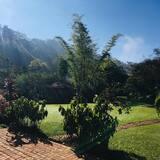 Standard Room, Garden View - Garden View