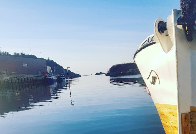Finnvika Lodges, Vestvågøy, Passeios de Barco