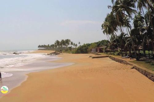 椰林海灘度假飯店/