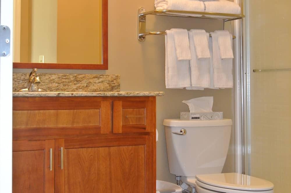 Studio-suite - 2 dobbeltsenge - handicapvenligt (HEARING) - Badeværelse
