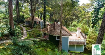 Picture of The Tall Trees Munnar in Devikolam