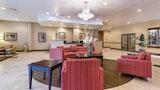 Picture of Comfort Suites Leesville in Leesville