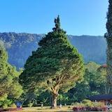 Garden View Rooms - Uitzicht op bergen