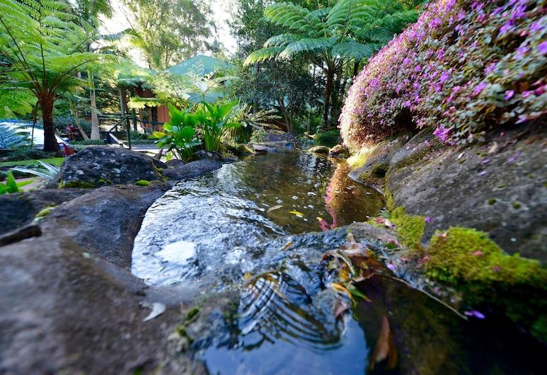 伊斯卡普蒙特渡假飯店, 坦伯林山, 花園