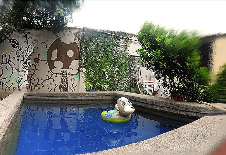 Funky Monkey Hostel, Guayaquil, Outdoor Pool