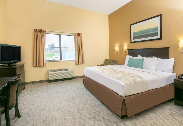Hawthorn Suites by Wyndham Longview, Longview, Suite monolocale, 1 letto queen, non fumatori, cucina, Camera