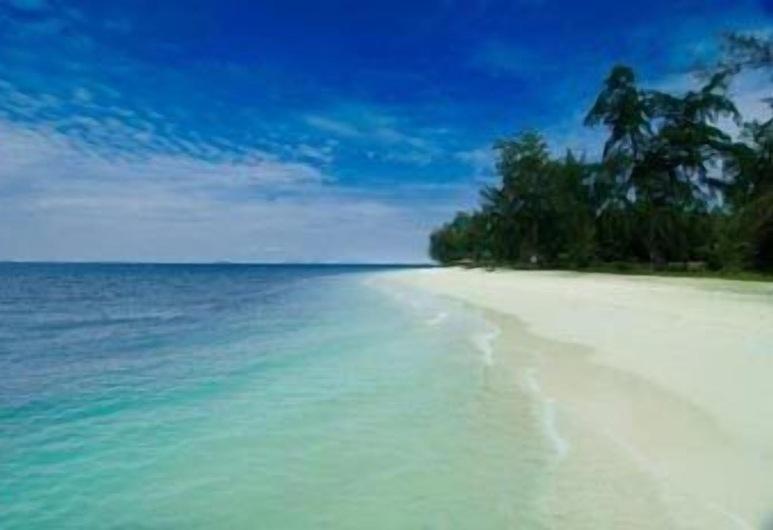 Aseania Resort Pulau Besar, Pulau Besar, Praia